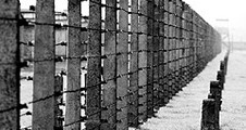 Auschwitz-Birkenau_226x120