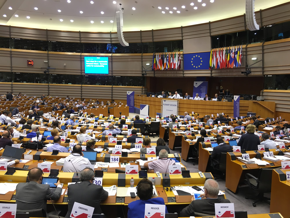 Bruxelles: unanimità Comitato Regioni parere Iacop sostenibilità
